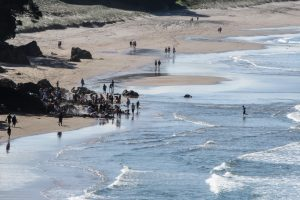 Hot Water Beach on the Coromandel Peninsula. New Zealand tours