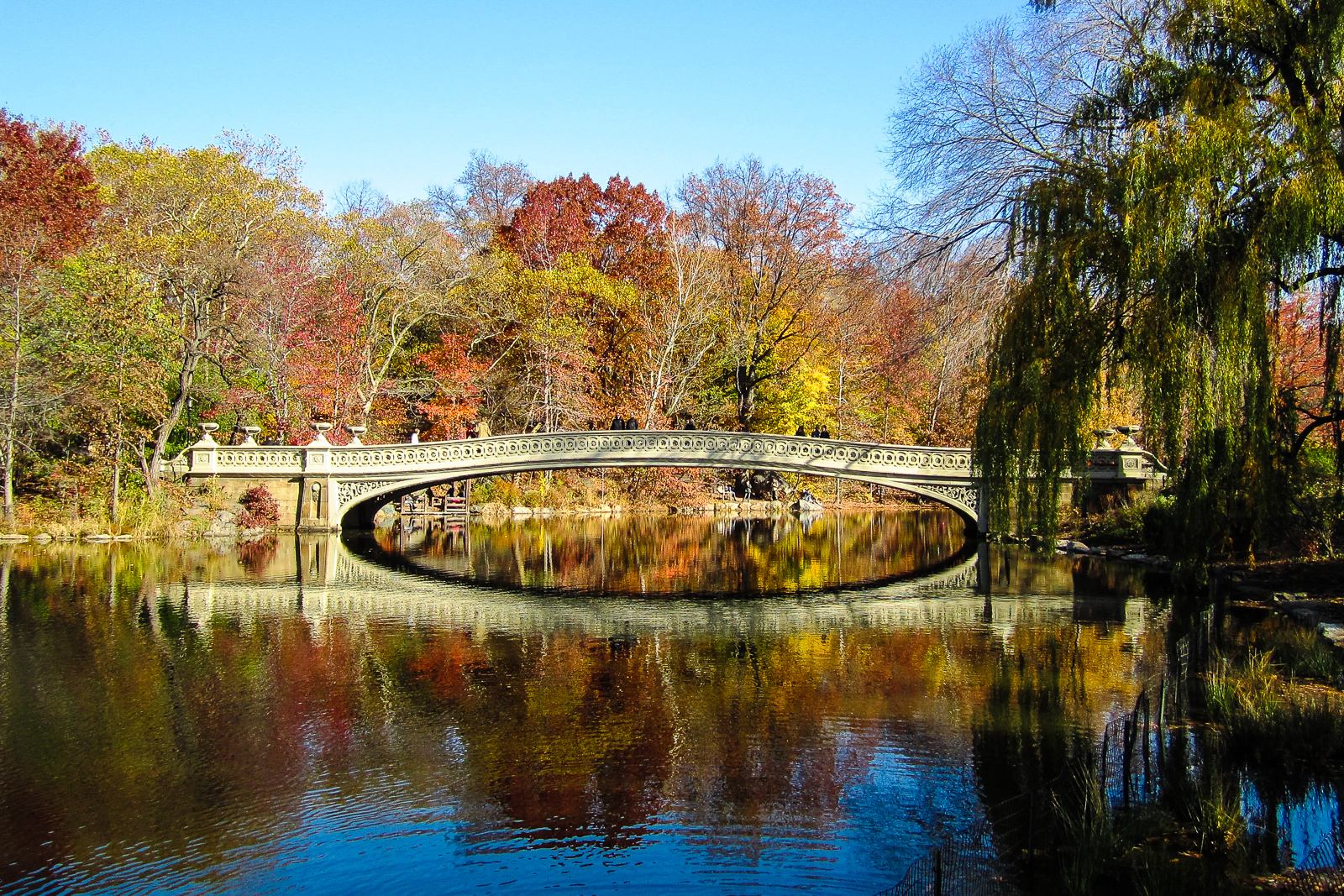 Autumn central park flying and travel for Things to do at central park