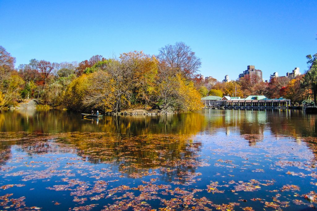 Boat house and rowing on central park thing to do in nyc and central park