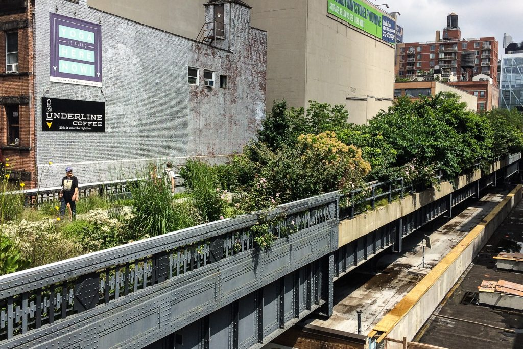 Chelsea High Line Public Park is one of the free things to do in new york city
