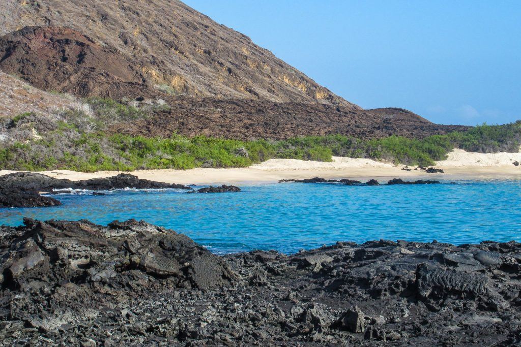 Santiago Island in the Galapagos is also called San Salvador or James Island. Pahoehoe lava, a type of basaltic lava, was erupted here in 1897