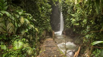 Things to do in Mindo, Ecuador. There are so many beautiful waterfalls in the rainforest of Ecuador, one more beautiful than the other