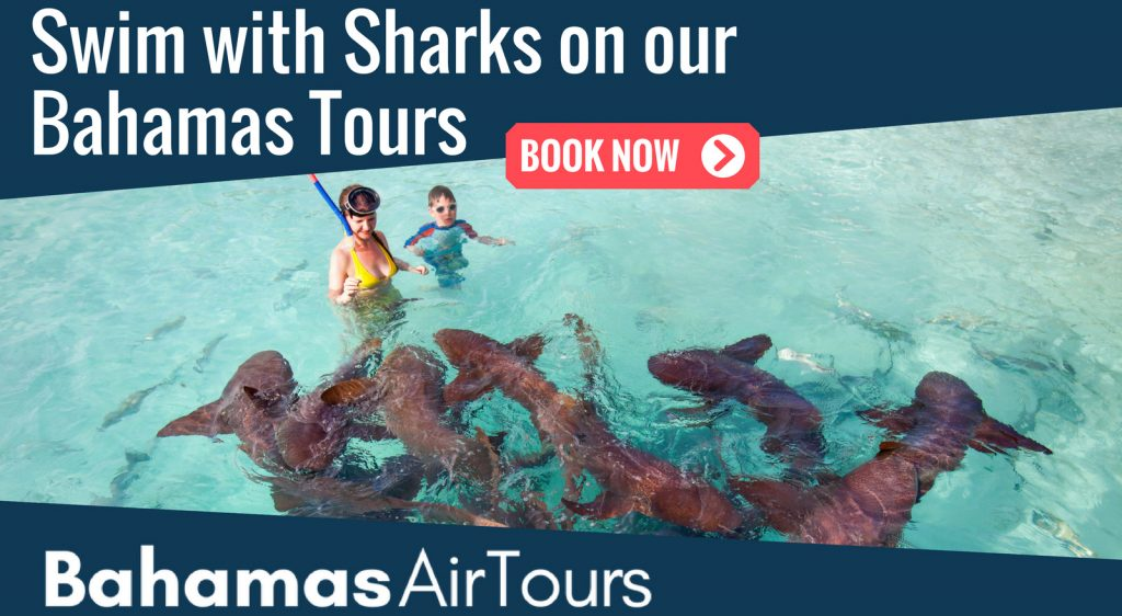 Flights to Bahamas Staniel cay. Swim with Sharks at Compass Cay Staniel Cay on our unique Island Hopping tours and boat excursions of the Bahamas.