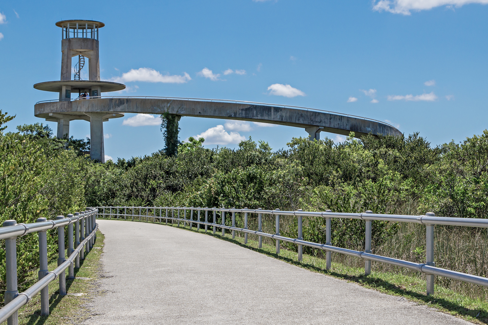 Observation Tower at Shark Valley in the Florida Evergaldes. Florida Everglades Tours.