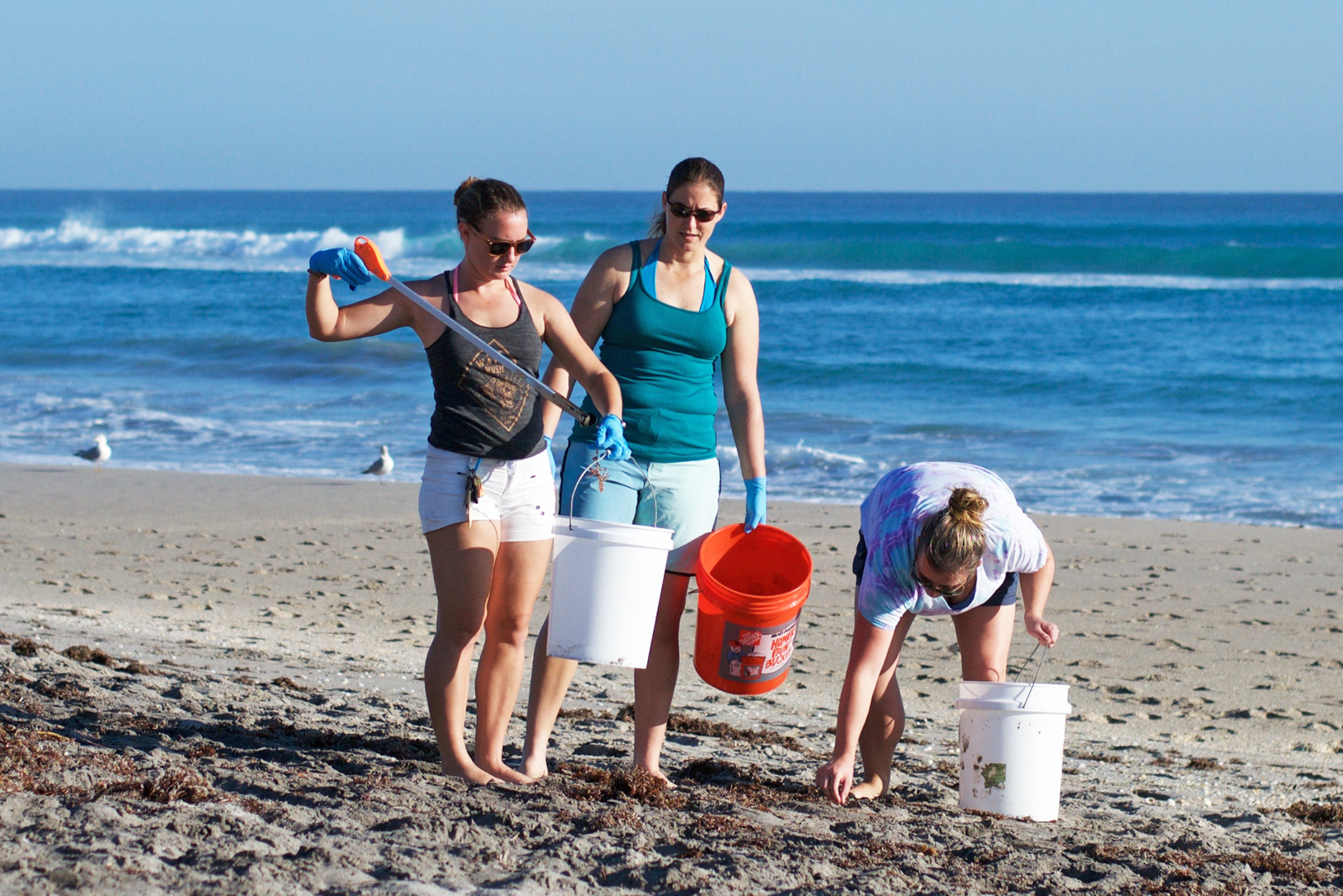 Beach Clean up for turtle conservation. Things to do in West Palm Beach, Loggerhead Marine Life Center