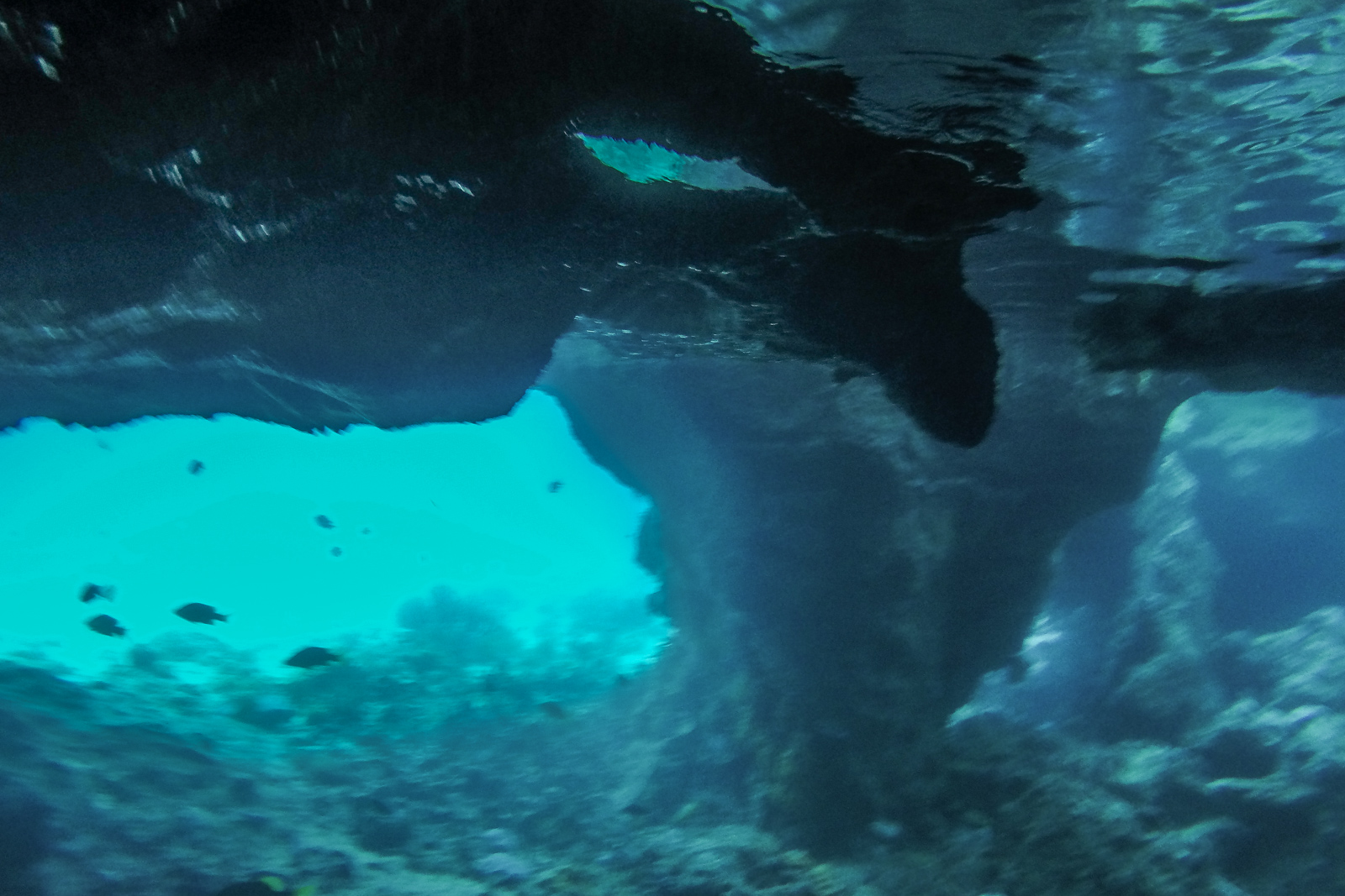 Snorkel into Thunderball Grotto on a Miami to Bahamas Day Tour