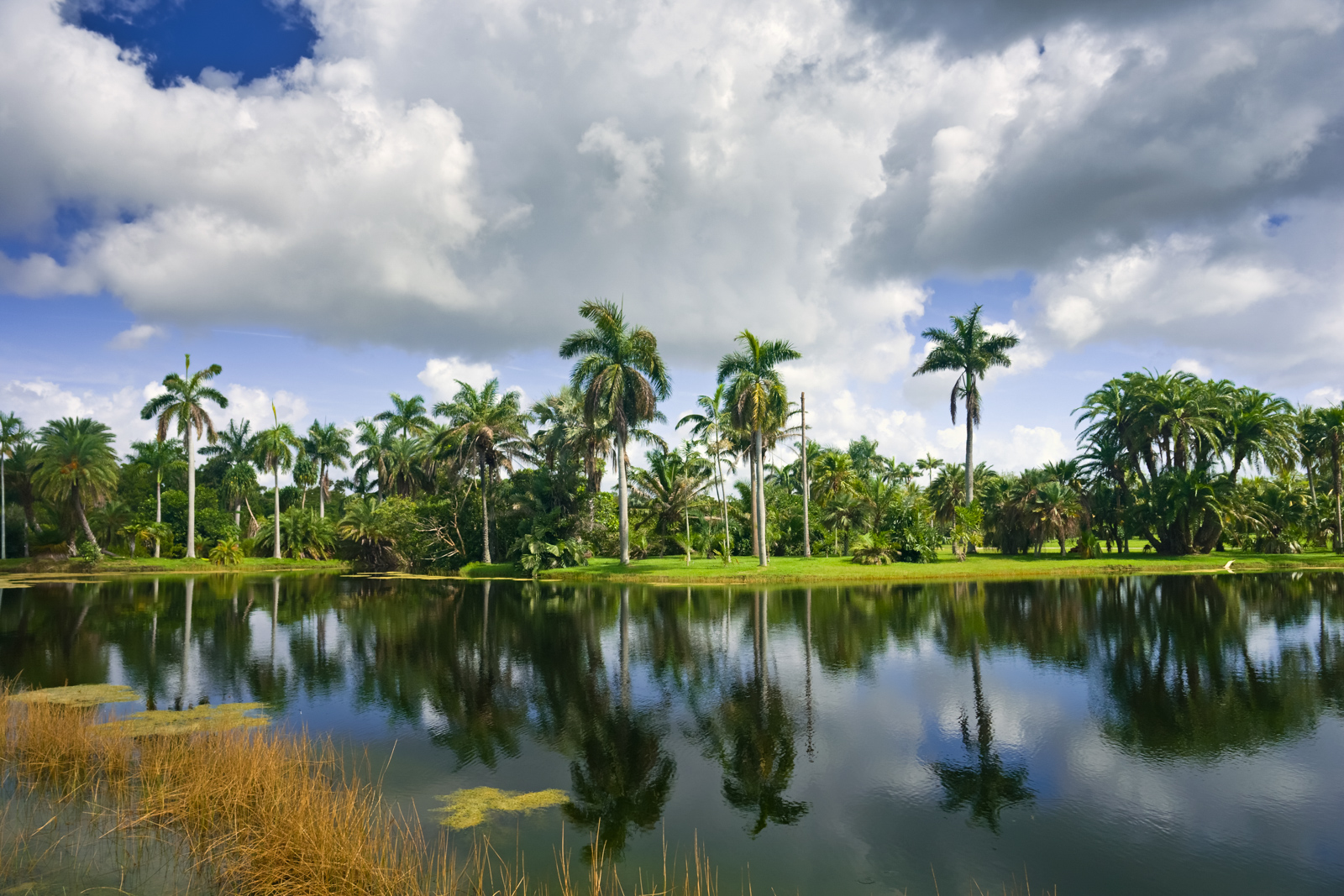 Fairchild Botanic Garden is a top Miami attractions and best things to do in Miami. There are Plenty of tourist attractions in Miami Florida. This Guide presented by Flying and Travel.