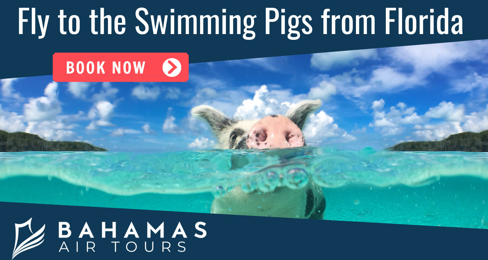 Bahamas Air Tours Swimming Pigs Tours from Florida