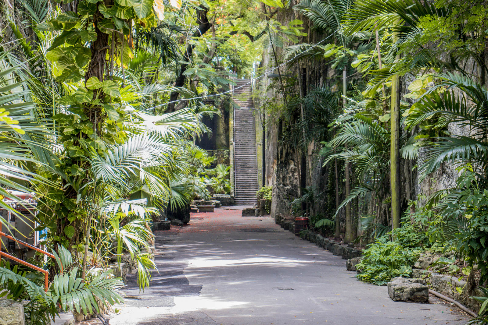 The Queen's Staircase is one of the best things to do in Nassau Bahamas.
