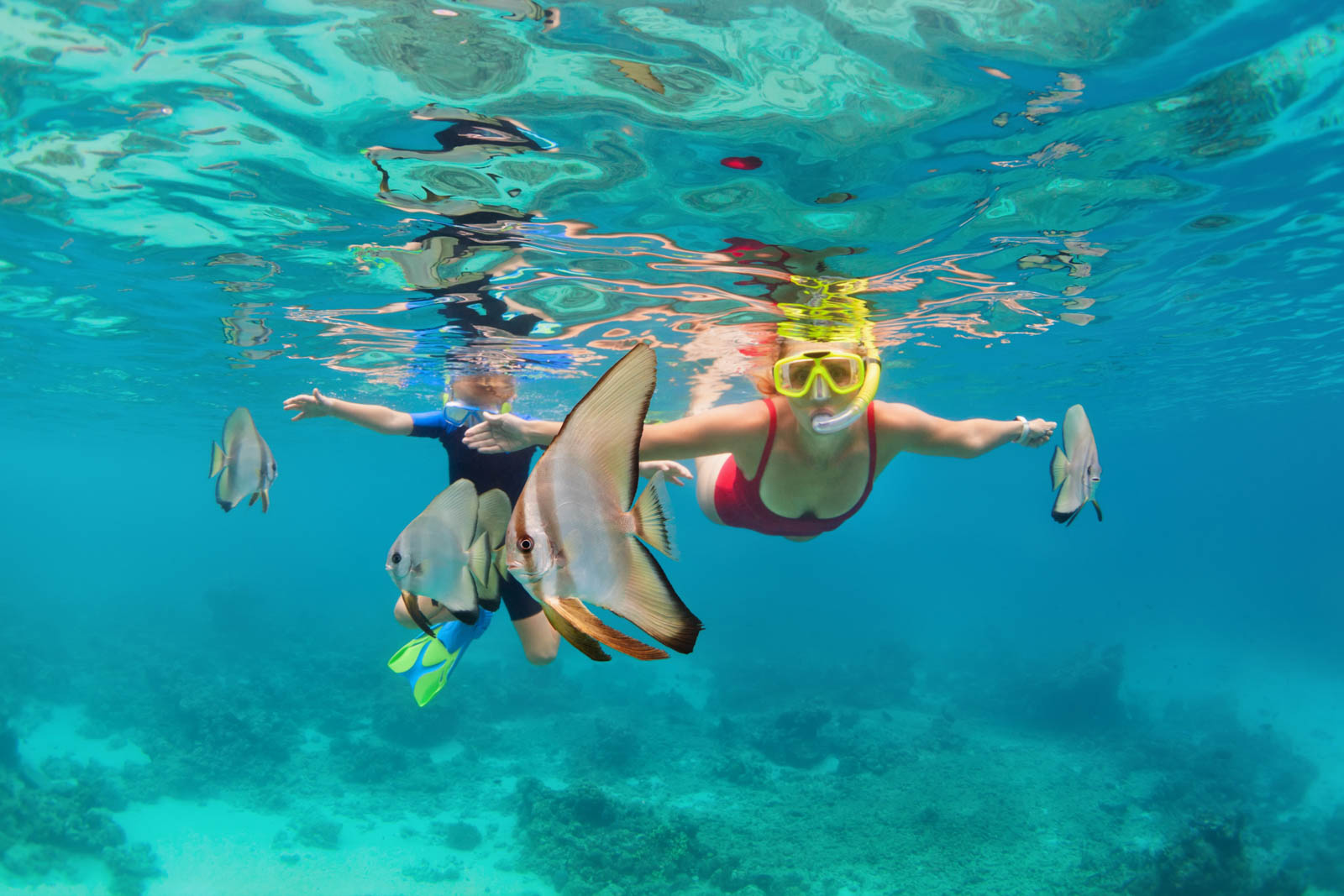 Snorkel in the tropical waters on any number of cruises from Florida to Bahamas. A day cruise to Bahamas is a top Florida attraction on any family itinerary.