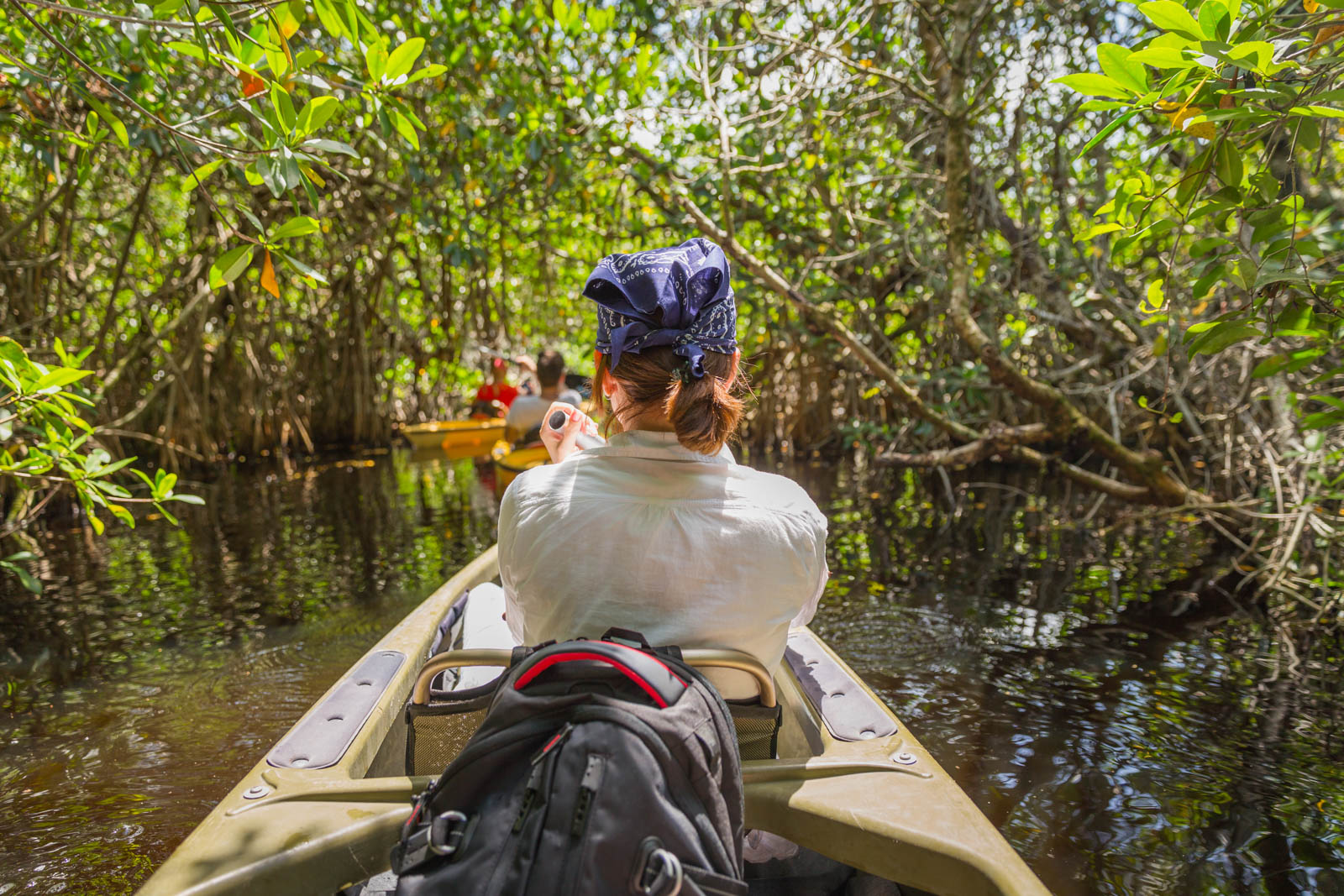Kayaking in a mangrove forest of Everglades National Park.